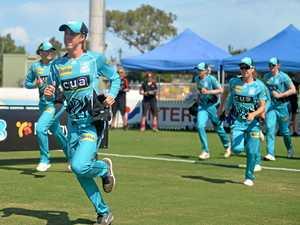 Cricket Australia throws support behind Harrup Park upgrades
