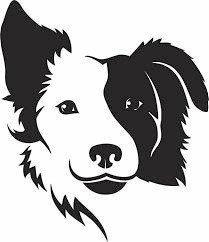 Gympie's cutest dog revealed