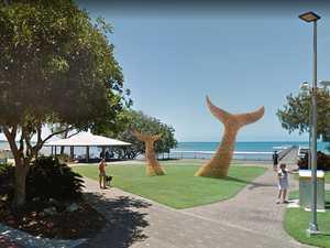 Meet the artist behind new bamboo whale sculpture