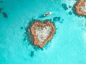 WORLD FIRST: Hamilton guests can now visit iconic Heart Reef