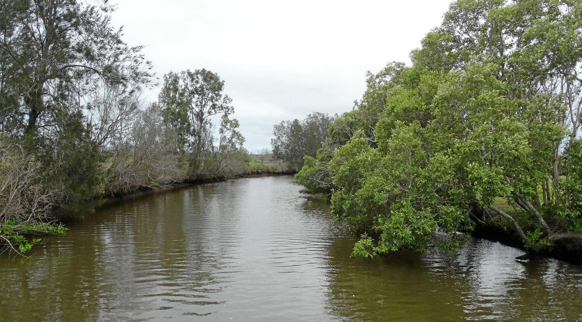 The Yandina Creek Wetlands.
