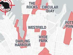 Map reveals Sydney's billion rat problem