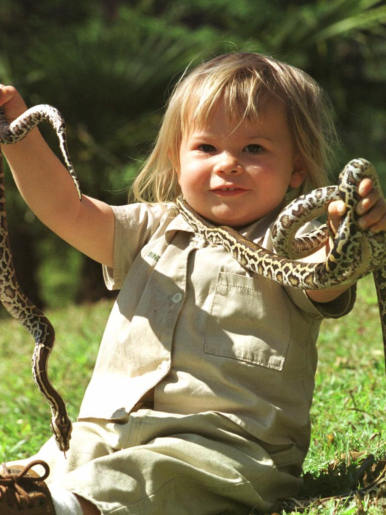 Following in her dad's footsteps! Bindi with a couple of pythons.