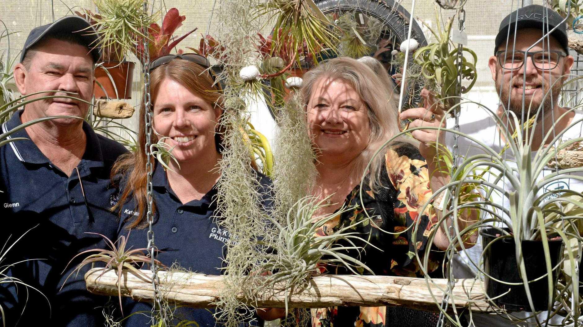 Glenn and Katrina Kime, Glenda Thompson and Jamie Shaw prepare for the Bromeliad Group's first sale in Rockhampton