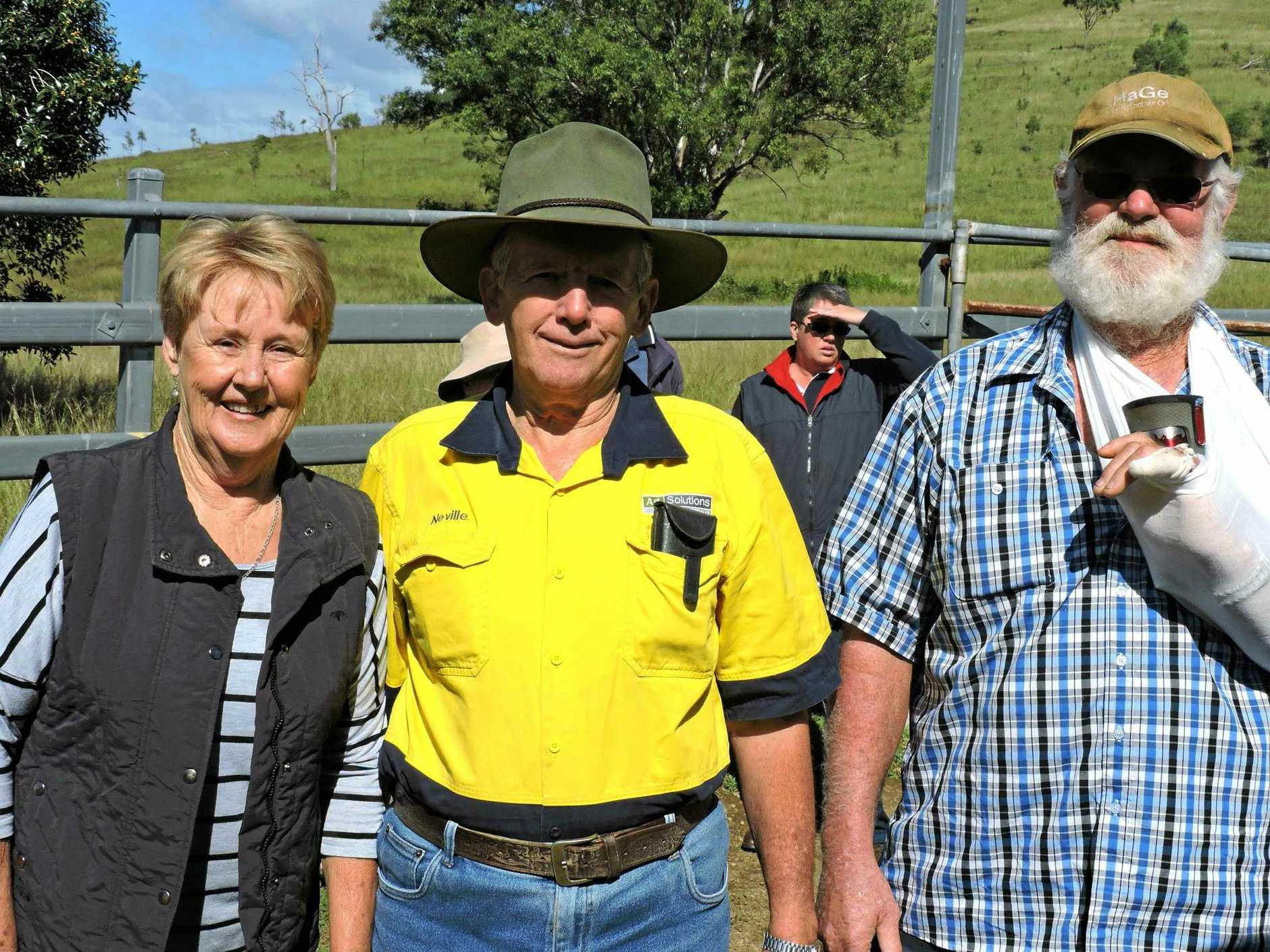 CARCASS CLASSIC. 2259 -  Classic committee treasurer Neville Zerner (centre) with Lesley and John Groves, of The Nut Farm at Mary's Creek who have been exhibiting cattle at the Classic for many years. The Groves entered nine limousion and limousion cross cattle this year.