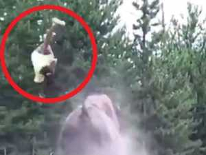 WATCH: Horror as beast sends girl flying