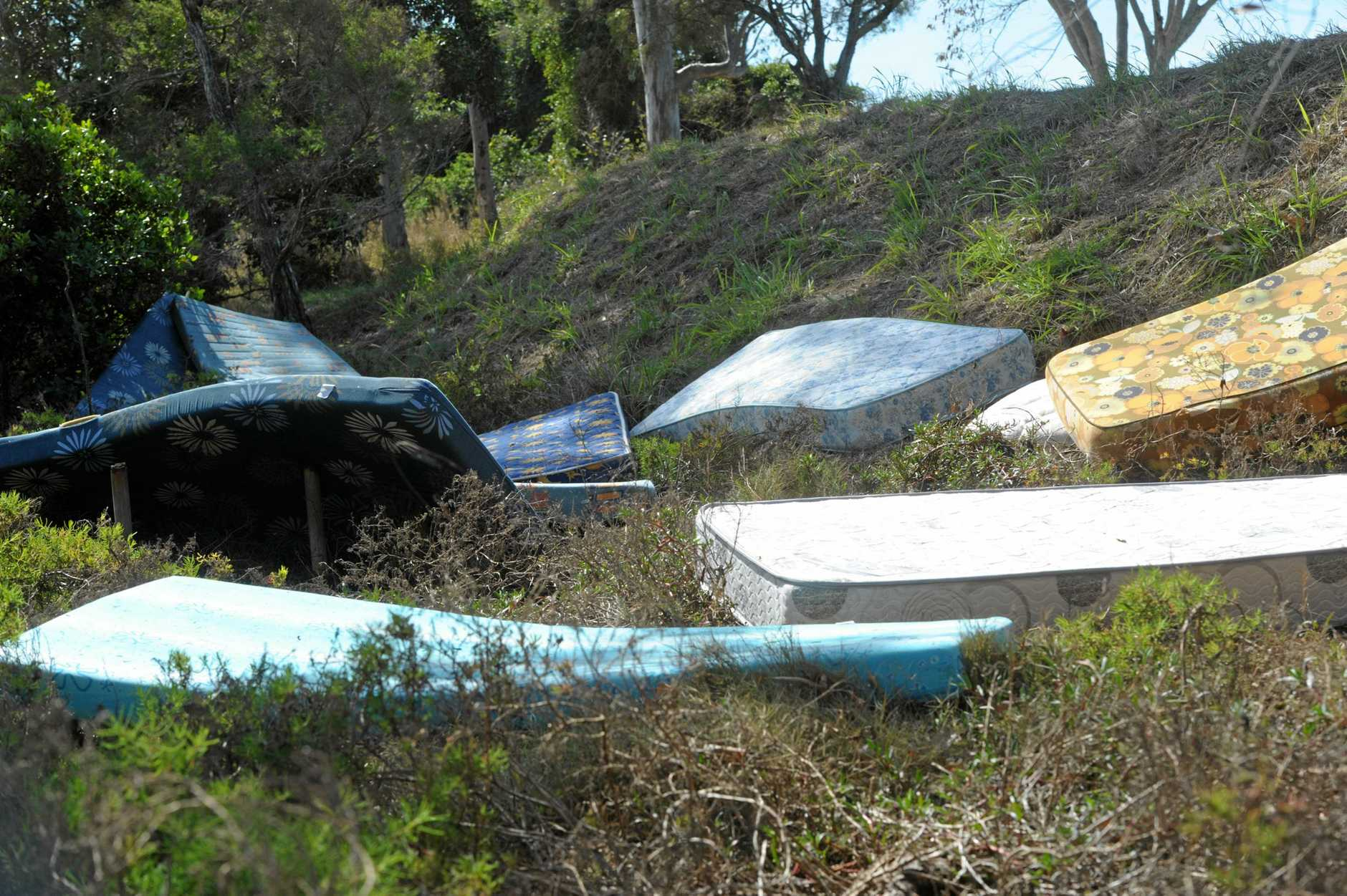 DUMPED: More than a dozen mattresses have been spotted littering the embankment between the Burnett River and McGills Road. There was also tyres and rubbish sighted along that stretch.