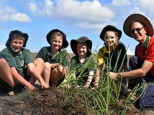 School goes green to help creek