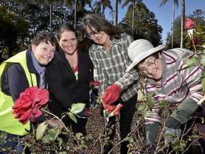 Budding gardeners learn the right cuts