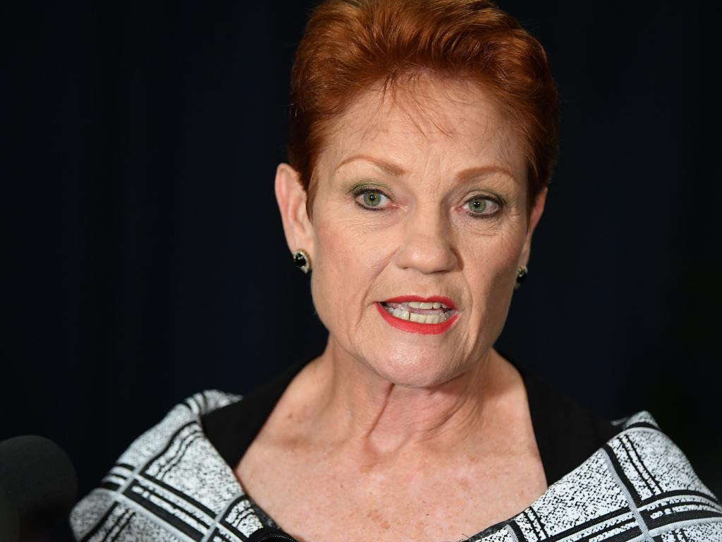 One Nation leader Senator Pauline Hanson has blasted Barnaby Joyce's 'ridiculous' claim he's struggling to make ends meet on a politician's $200k a year wage as she backs calls to lift dole payments for jobseekers. Picture: AAP
