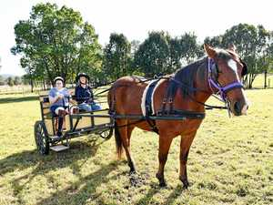 Horseriders giddy-up for open day