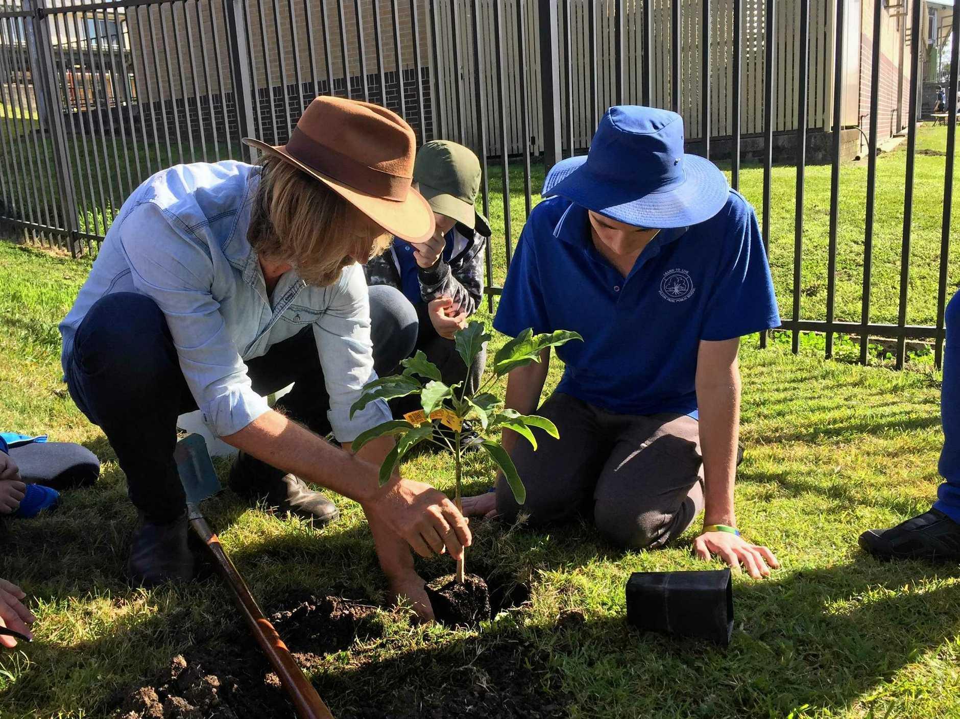 PLANTING: Gardening guru Phil Dudman helped John and Declan plant the flame tree seedling at Wilson Park School.