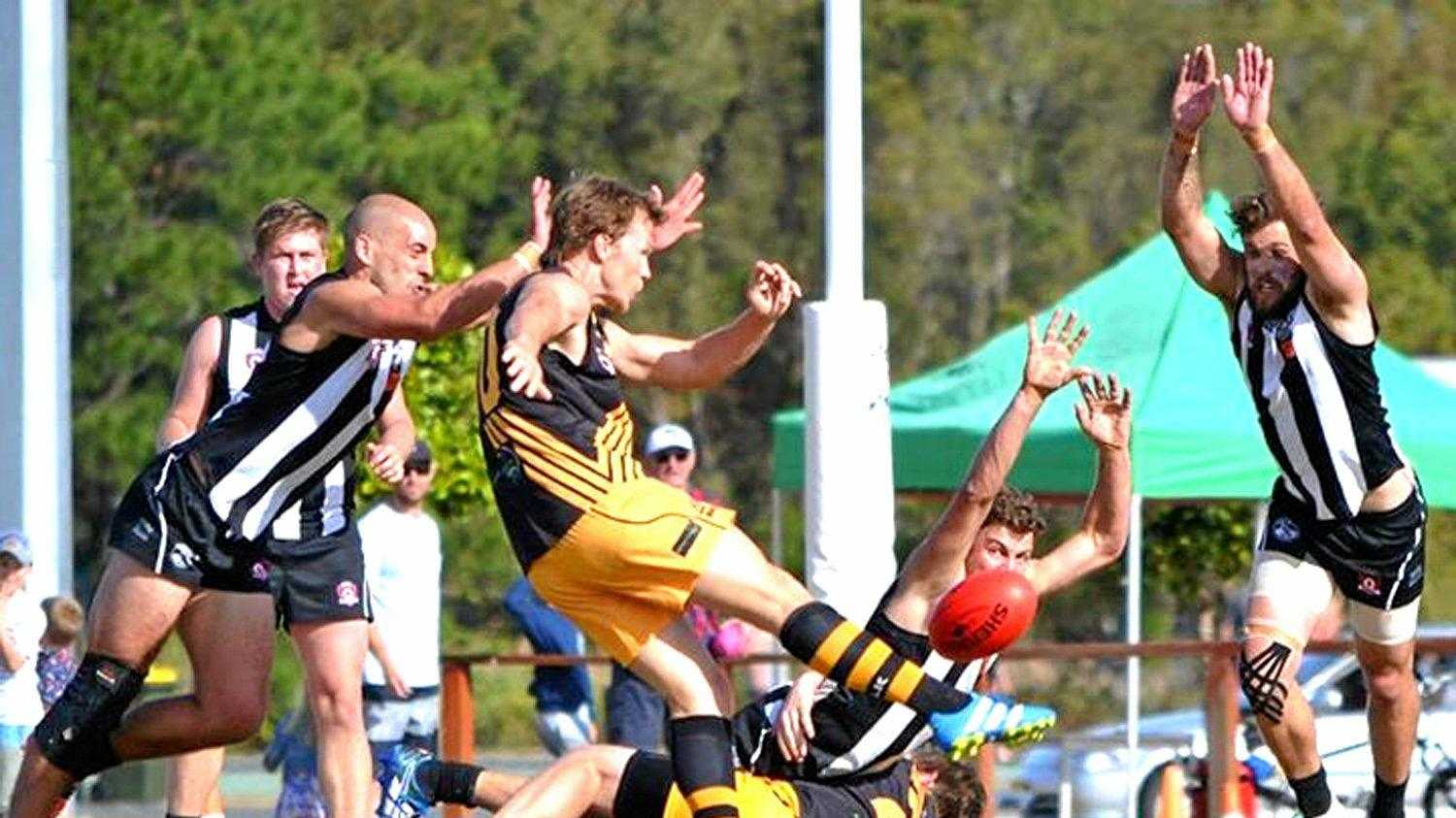 The Tweed Coast Tigers and Byron Bay Magpies, pictured during the 2017 grand final, will join Lismore and Ballina playing against their Queensland counterparts from next season.