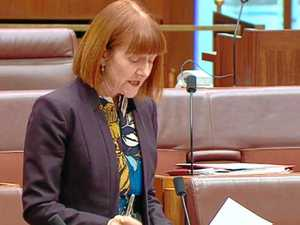 Greens: People on cashless card 'spat on, labelled druggies'