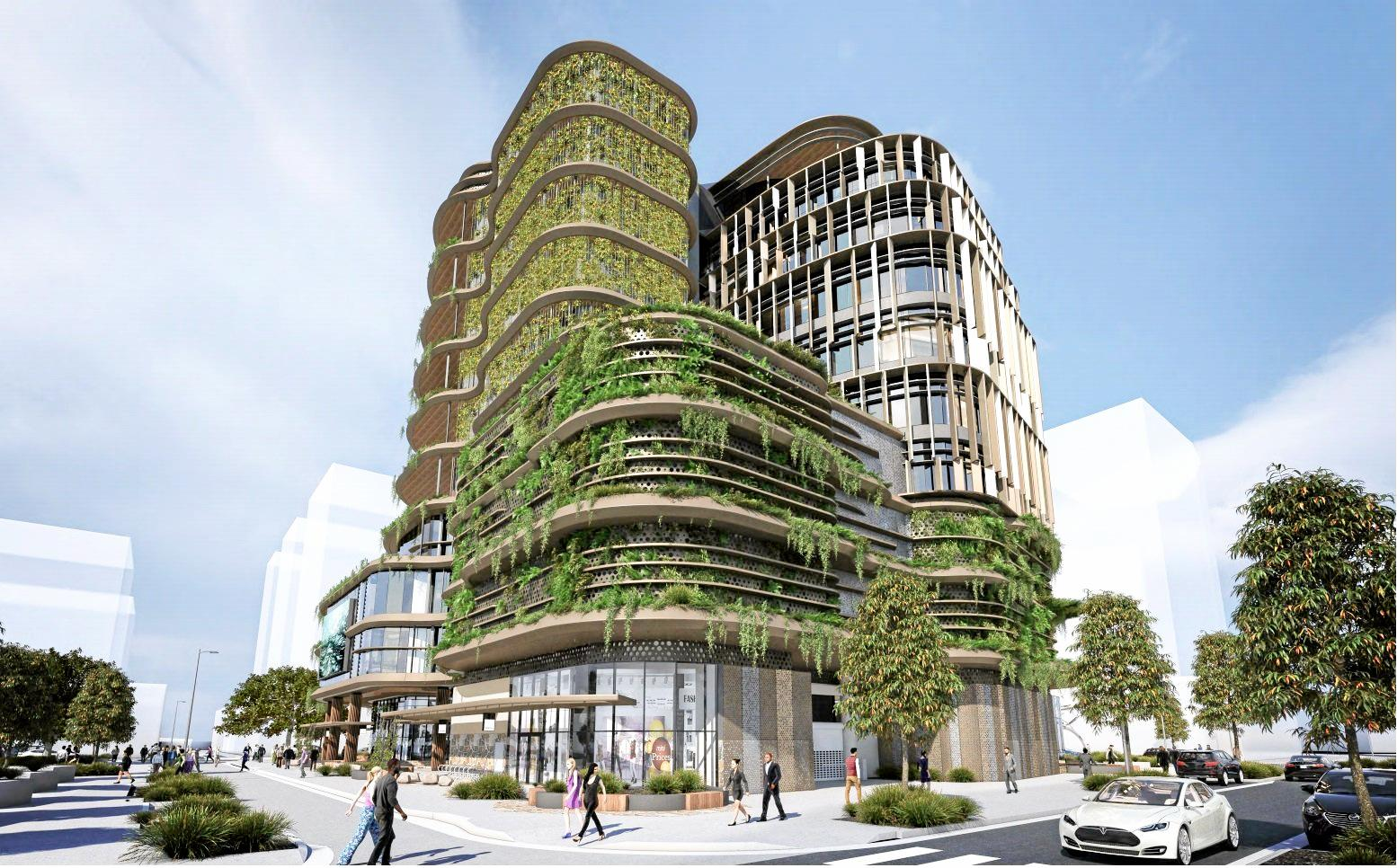 A drawing by Cottee Parker Architects shows what Sunshine Coast City Hall might look like.
