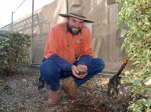 Meet Central Queensland's trainee of the year
