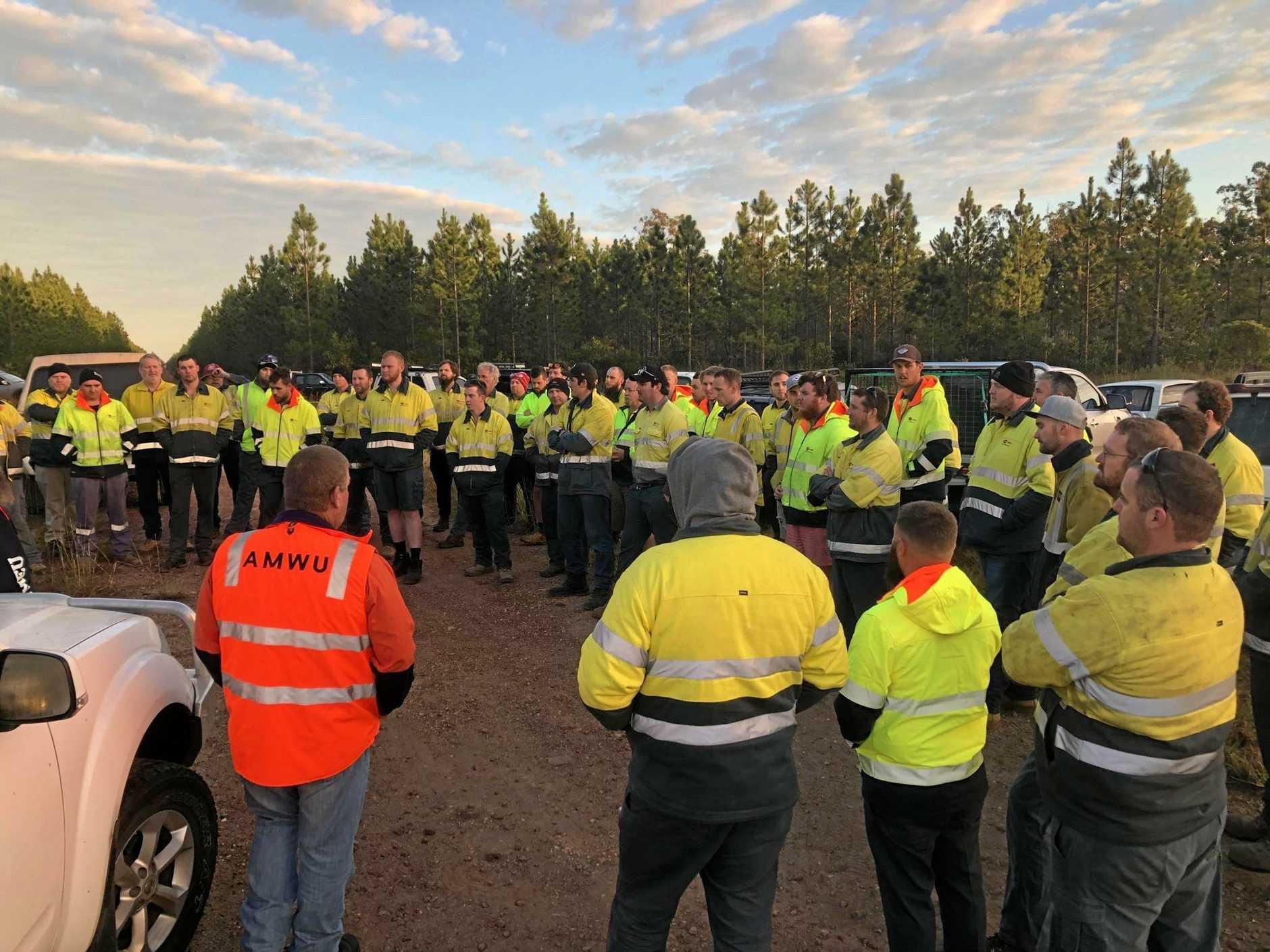 Hyne Timber employees striking today