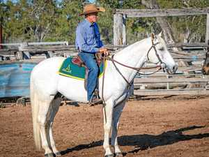 Shiraz 'snuffs the battle with delight' at Stock Horse comp