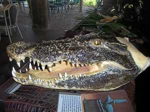 Croc's head and booze stolen from CQ tourist venue