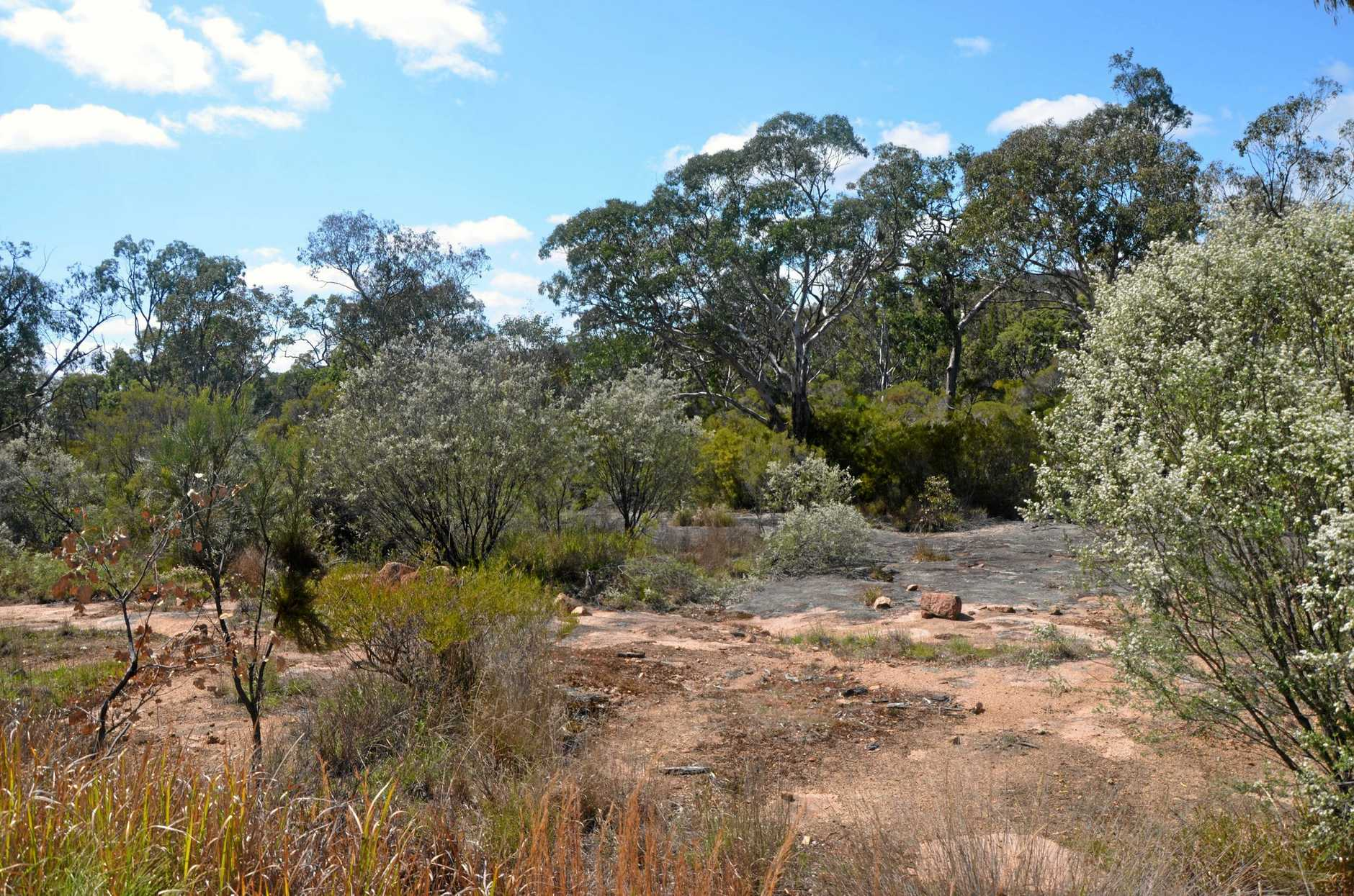 The proposed Emu Swamp Dam site.
