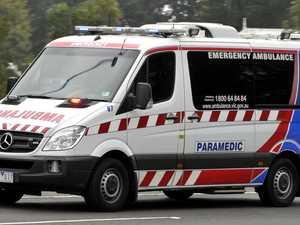 Toddler mauled in Melbourne dog attack