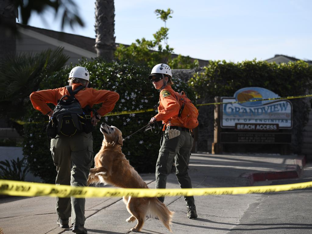 Rescue dogs were used at Grandview Beach. Picture: AP