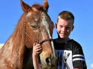 Horse-assisted learning helps special needs boy 'come alive'