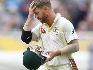 Can the real David Warner please stand up?