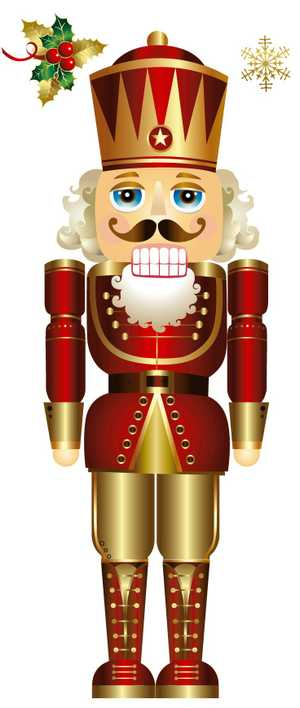 The nutcracker is one of the most well known ballets. It is coming to laidley for the very first time in the september holidays.