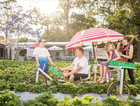 Join Slow Food Noosa & Agribusiness/Tourism guru Kim Lewis from Cooloola Berries followed by a smorgasbord breakfast at the View Restaurant, Pepper's Noosa