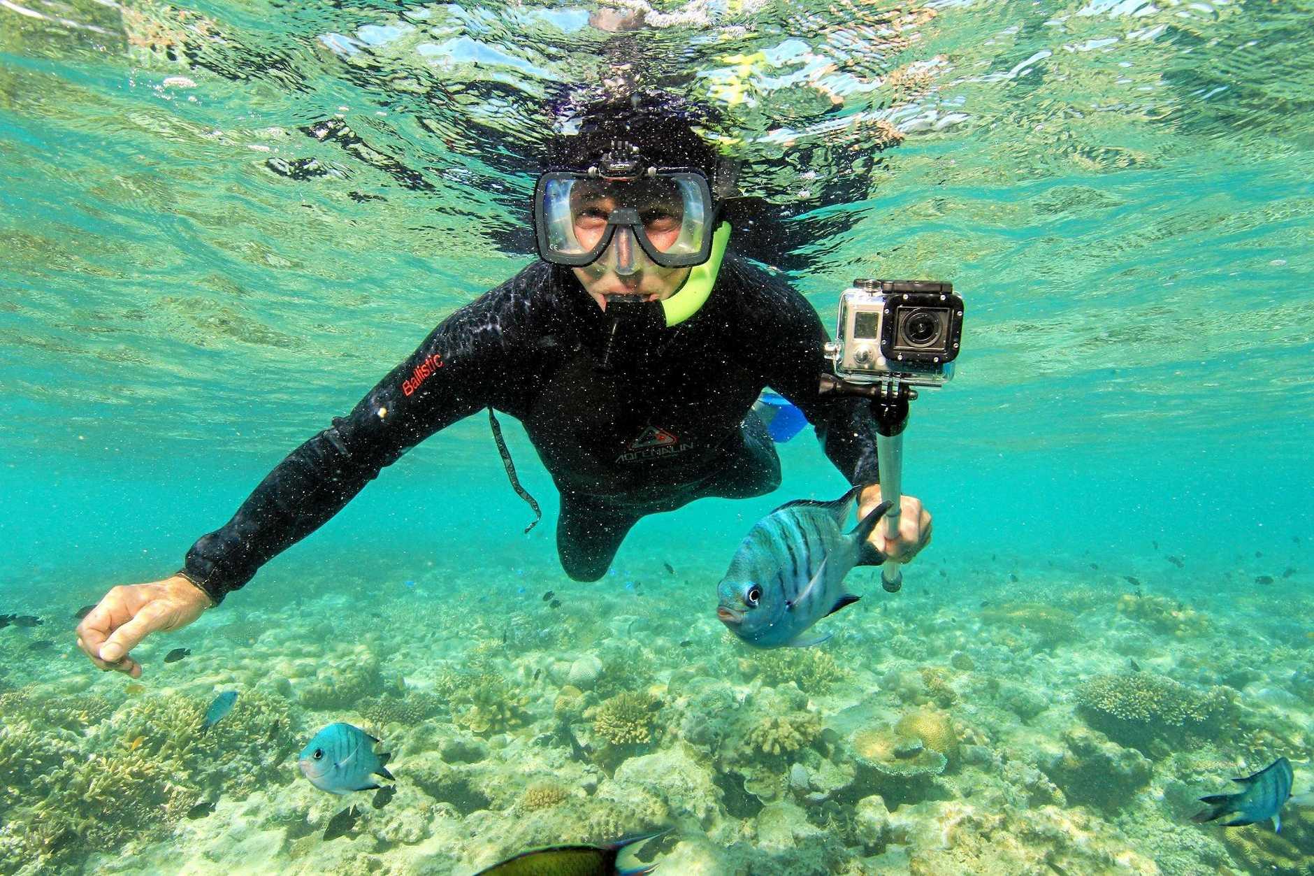 DIVING: Tony Fontes dives deep at Hardy Reef.