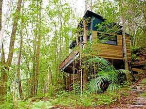 How this 'treehouse' ended in a drawn-out court battle