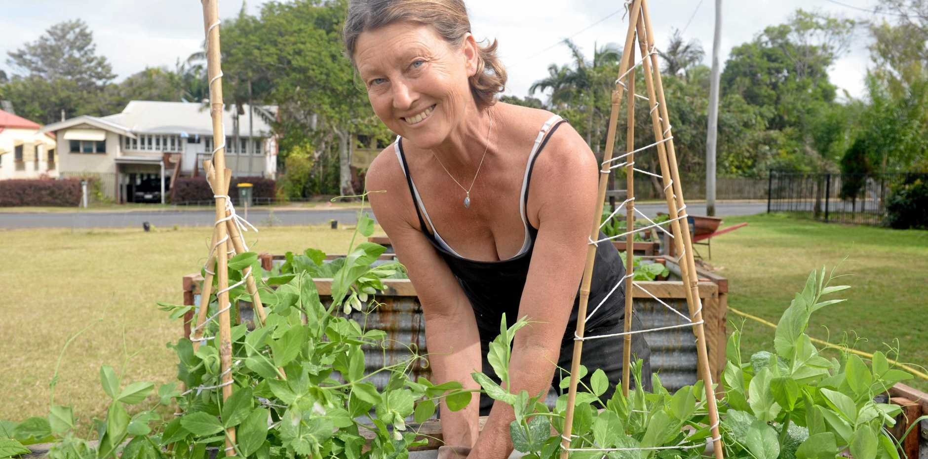 Kirsten Muir is grateful to local businesses who donate seeds, plants and other gardening products to the community garden on Ross St