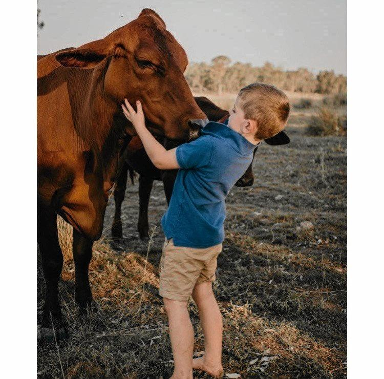 The horse accident hasn't damaged Louie's love of animals.
