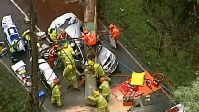 A family has been rushed to hospital after a tree fell on their car. Picture: 9 News/Channel 9Source:Channel 9