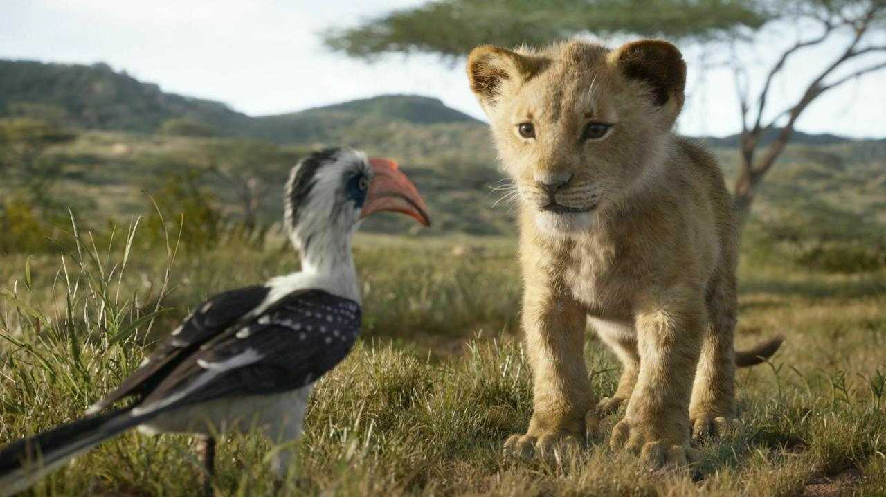 The Lion King's CGI has divided critics.