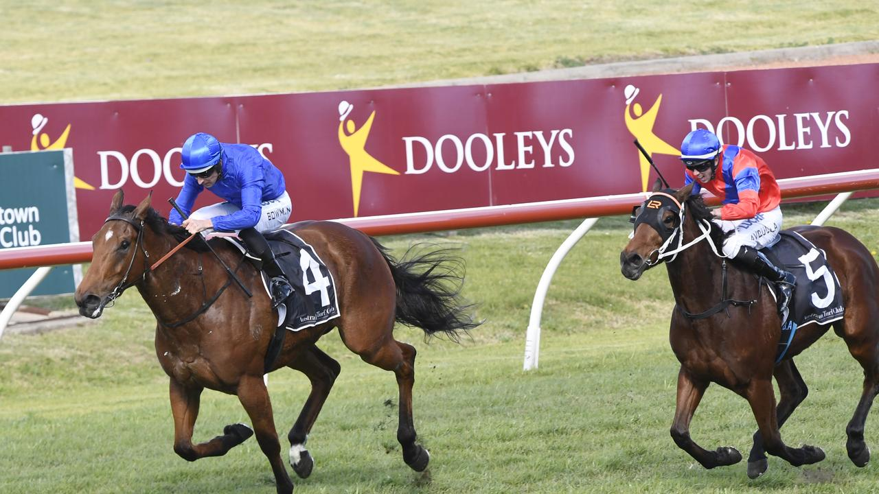 Cummings says Alizee is still a possibility for The Everest. Picture: AAP
