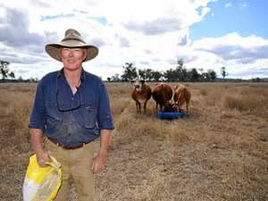CQ Grazier battling drought resorts to clever measures
