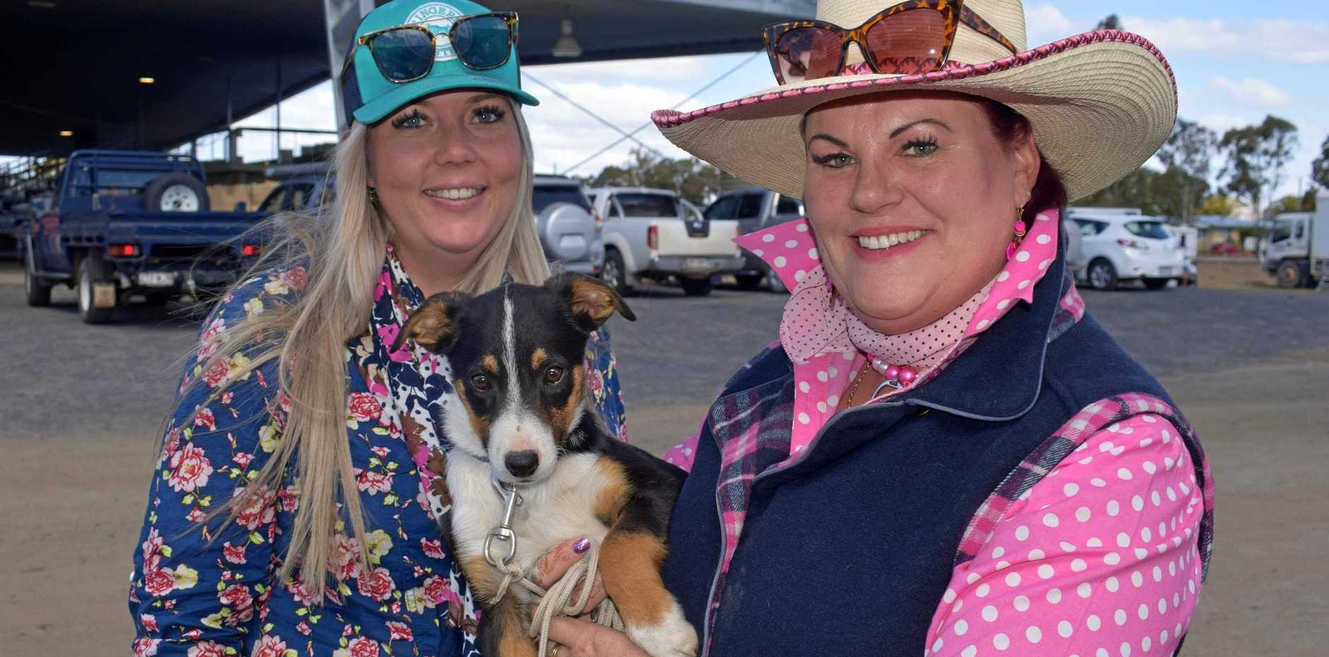 Kate Oliver and Tammy Dalton with puppy Harvey.