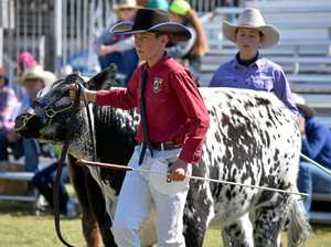 Warwick school comes out with top carcass at Ekka