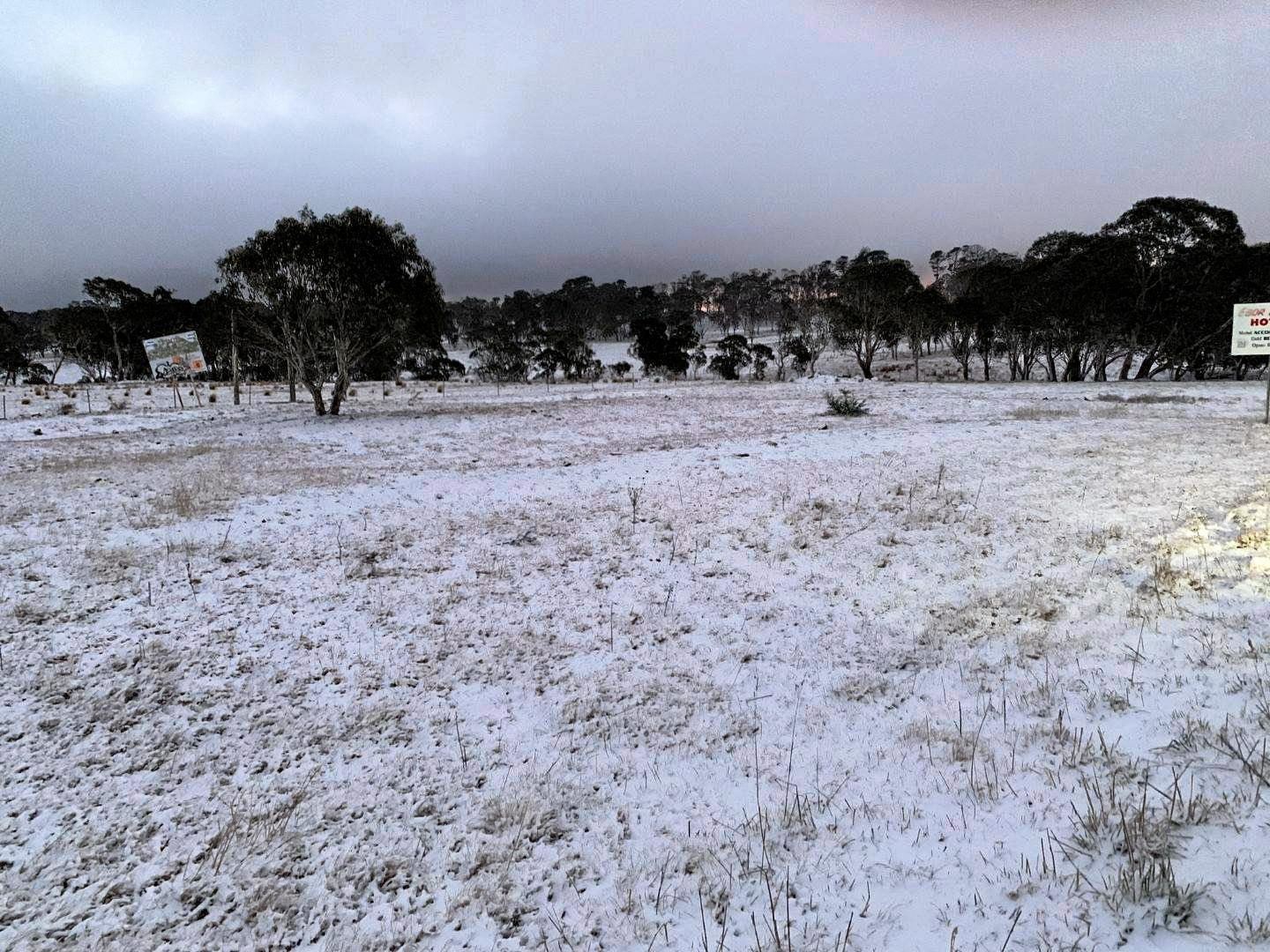 Outskirts of Ebor Village (alt. 1350m) on Monday morning. Residents and travellers were greeted by a winter wonderland up on the Tablelands over the weekend.