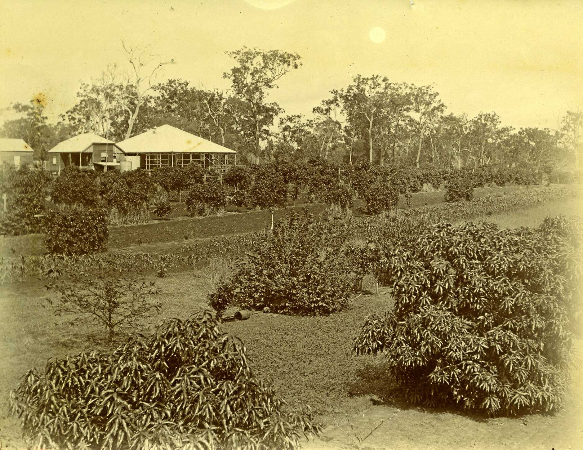 Kendall family home Eden circa 1878. Photo courtesy of Picture Bundaberg Photo Contributed