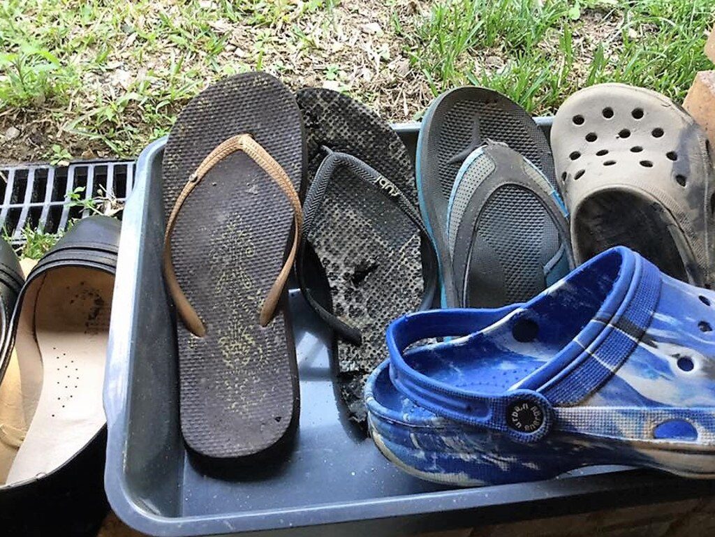 Thongs and Crocs are prime targets when Toby's on the hunt.