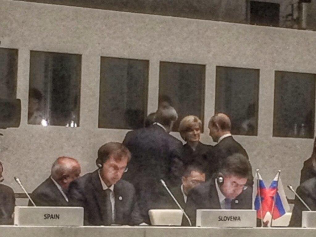 Julie Bishop meets with Vladimir Putin at the ASEM Summit in Milan.