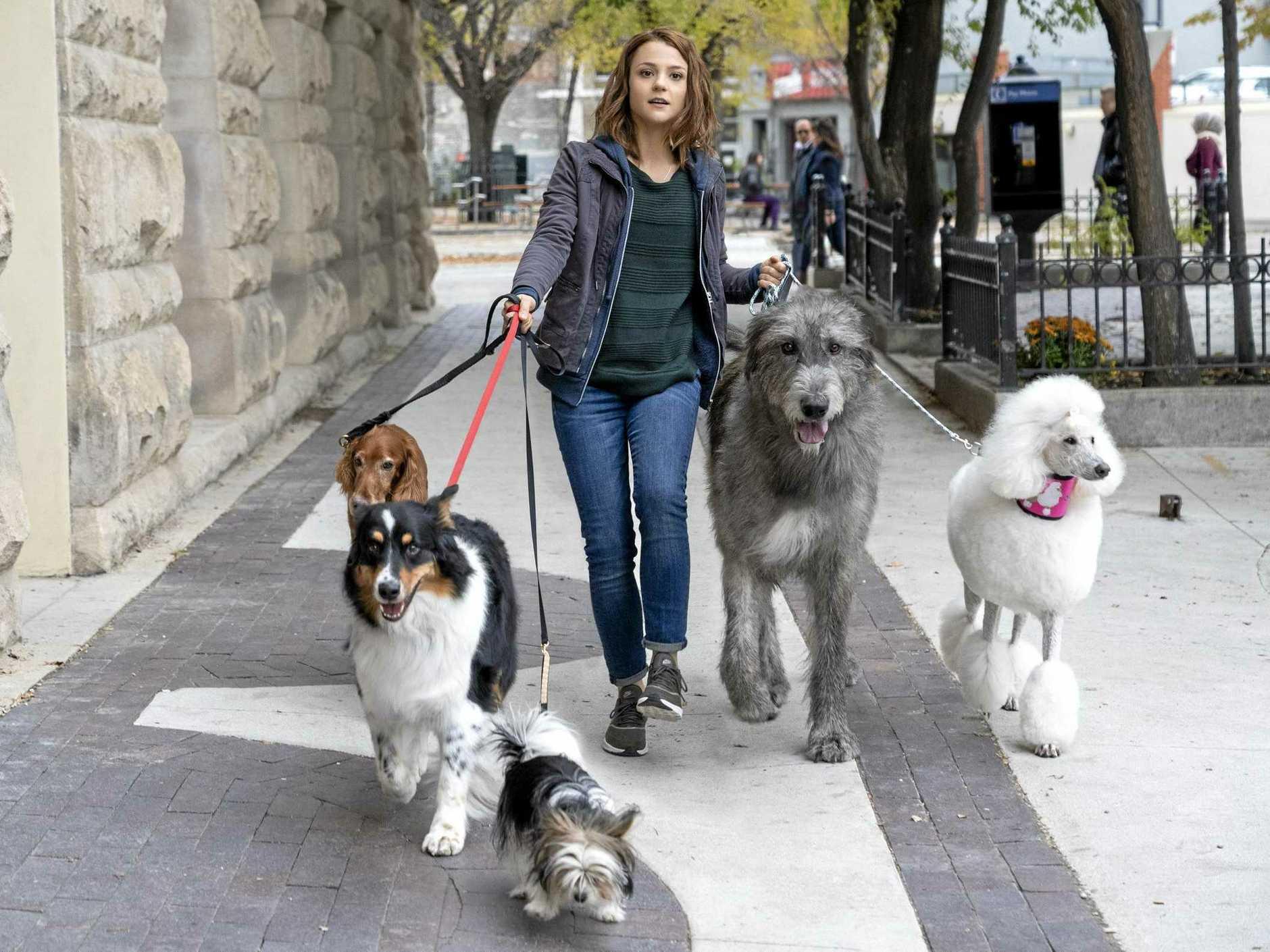 Kathryn Prescott stars in the movie A Dog's Journey.