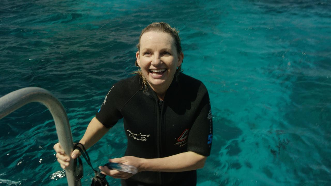 Federal Environment Minister Sussan Ley snorkels and spots a clown fish on coral at Flynn Reef, off Cairns