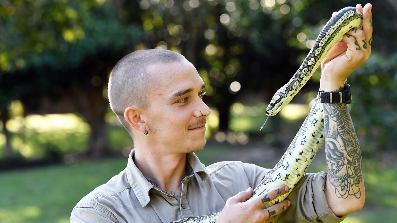 HOME INVADERS: Weather is warming up so snake season is upon us! Rhys Chapman owns a snake catching business and is preparing for a another busy season. Photo: Patrick Woods