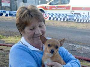Carol Cockerell's chihuahua alerted her to the fire
