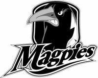 Lower Clarence Magpies - Logo