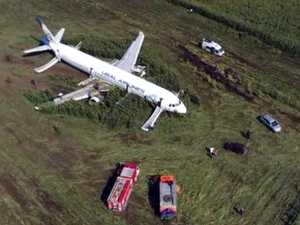 Hero pilot lands plane in cornfield